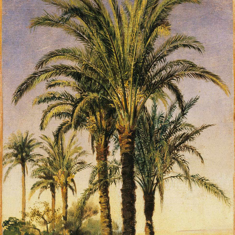 Nineteenth century sunny desert scene with three palm trees in centre